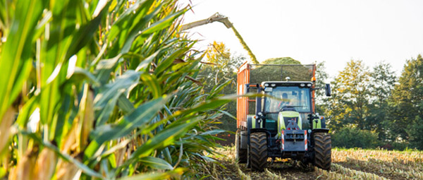 JOSERA Tractor at harvest
