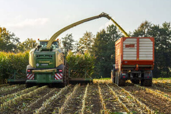 JOSILAC machines during the maize harvest