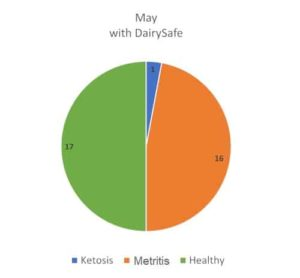 JOSERA graphic shows May with Dairy Safe
