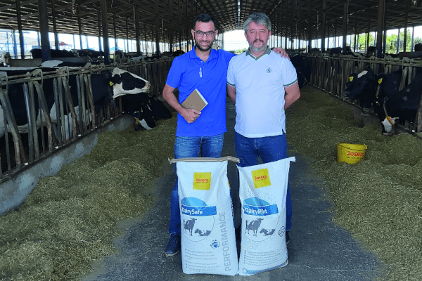 JOSERA DairySafe – for better animal health and milk yield
