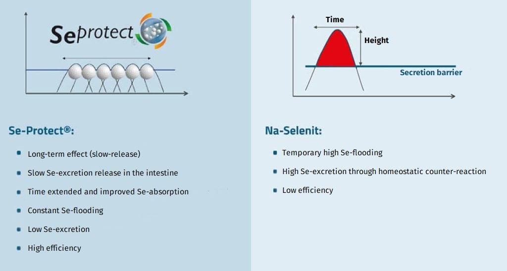 JOSERA Graphic shows comparison of Se-Protect and Na-Selenit
