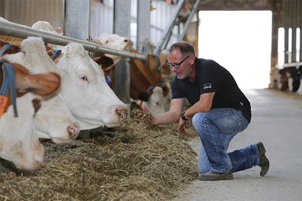 Success stories with DairyPilot